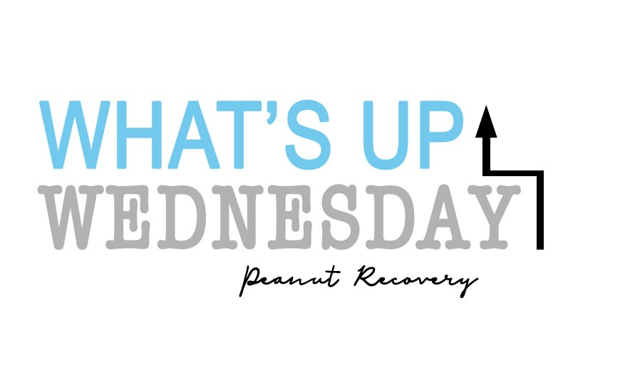 whats up wednesday 1 - What's Up Wednesday {05.30.2018}