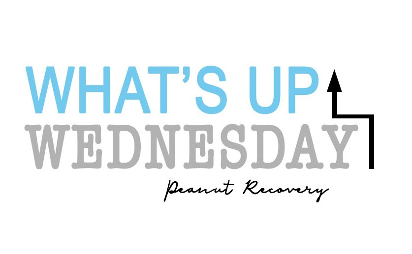 whats up wednesday - What's Up Wednesday {06.27.2018}